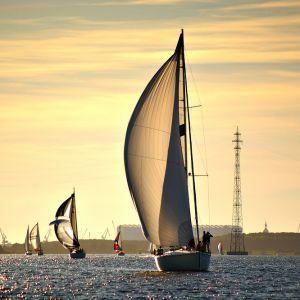 Rund Rügen 2011: Strelasund vorm Wind | 100% | 200 mm | f/5,6 | 1/2000 sec | ISO 320